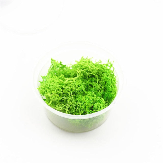 one box 2-2.5grams Natural moss microlandschaft  filler for glass globe silicone mold DIY jewelry making craft materia