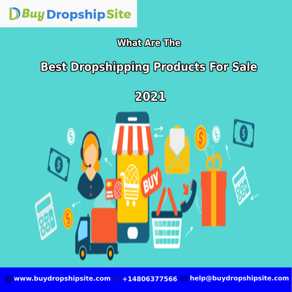 What Are The Best Dropshipping Products For Sale 2021