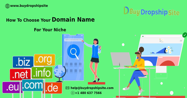 How To Choose Your Domain Name For Your Niche