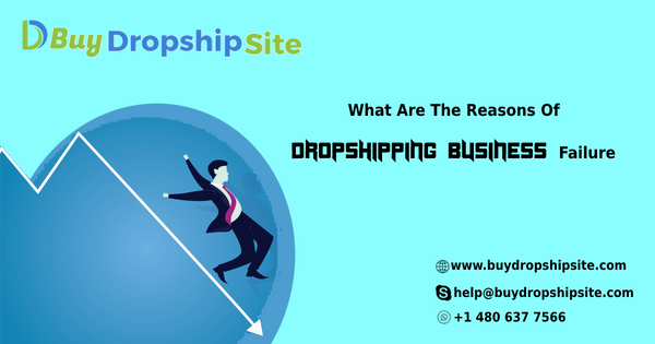 What Are The Reasons Of Dropshipping Business Failure