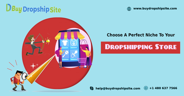 Choose A Perfect Niche To Your Dropshipping Store