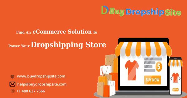 Find An eCommerce Solution To Power Your Dropshipping Store