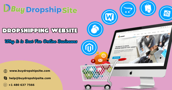 Dropshipping Website - Why It Is Best For Online Businesses