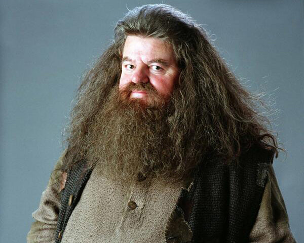 25 Best Halloween Costume Ideas For Men With Beards | Hagrid