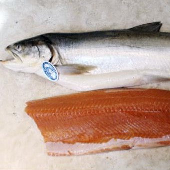 WILD CAUGHT ARCTIC CHAR 8 oz.