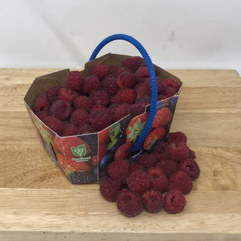 Local Raspberries - 1 pint