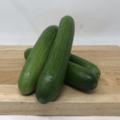 Cucumbers- Mini - Pack of 4