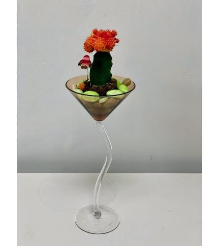 Ruby Radiance Cactus Garden in a Martini Glass
