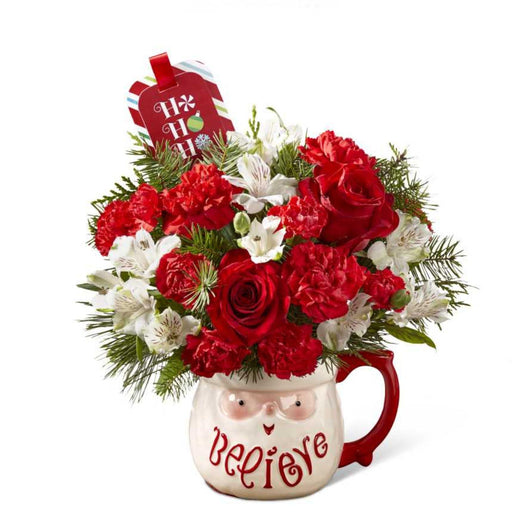 Festive Mug Bouquet - House Plants by Purple Rose Florist