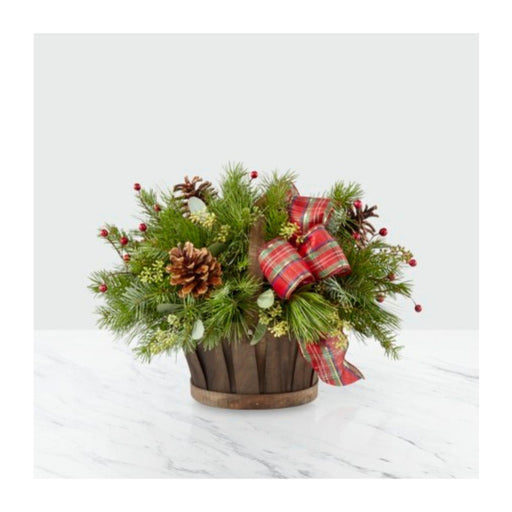 Holiday Basket - House Plants by Purple Rose Florist