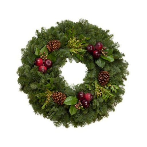 Winter Wonders Wreath - House Plants by Purple Rose Florist