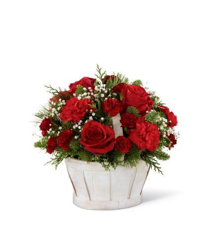 The FTD Celebrate the Season Bouquet - House Plants by Purple Rose Florist