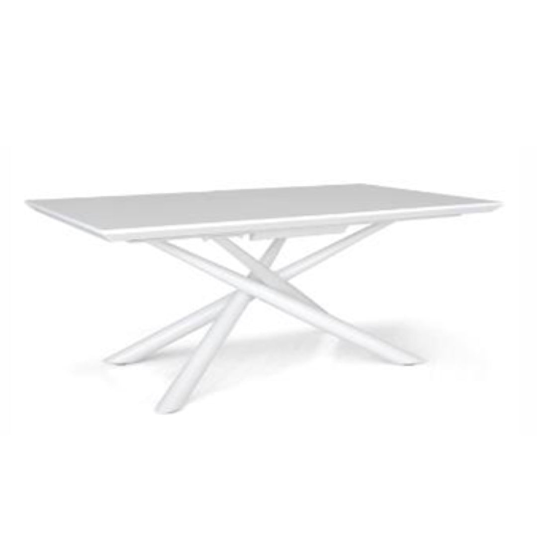 KADO DINING TABLE (5399883350177)