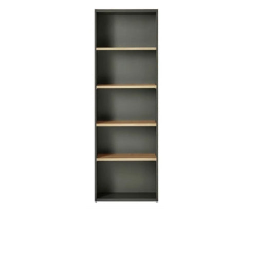 PLUSTEM2 5-layer Bookshelf (5399767056545)