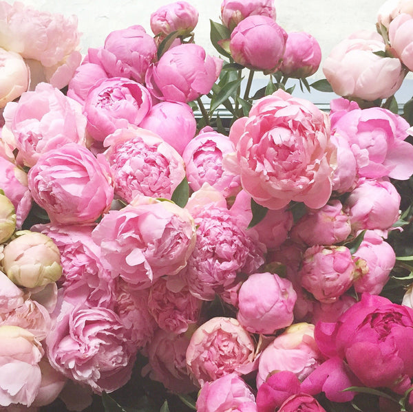 Floral Class: Peonies May 30th - SOLD OUT -