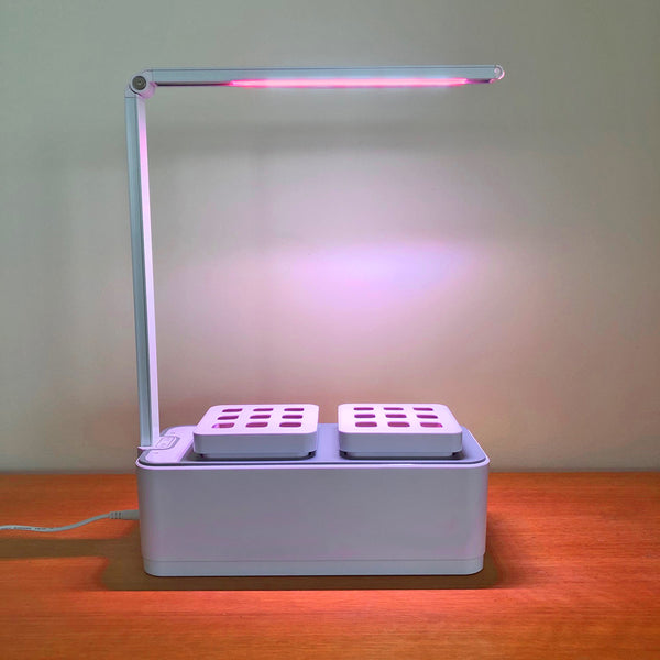 Smart Garden Hydro 2.0 with pink grow light on