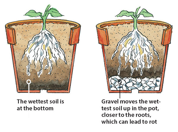 drawing showing a cross section of a pot with the water level moving up when a drainage layer is added below the soil showing the increased risk of root rot if a drainage layer is added