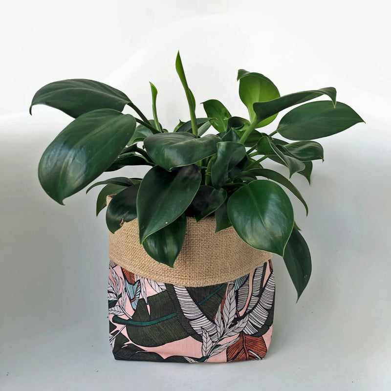 LIMITED EDITION Orchid & Fig Reversible Cover Pot - Pink Jungle - SOLD OUT