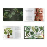 Book - Plantopedia: The Definitive Guide to Houseplants