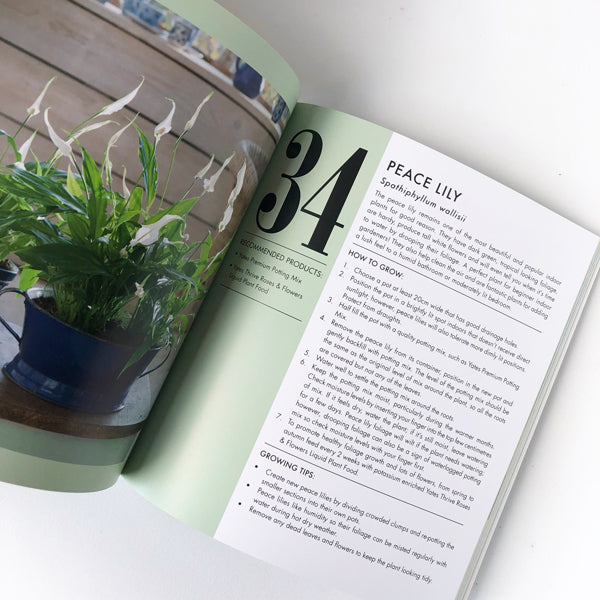 Book - Yates Top 50 Indoor Plants and How Not to Kill Them