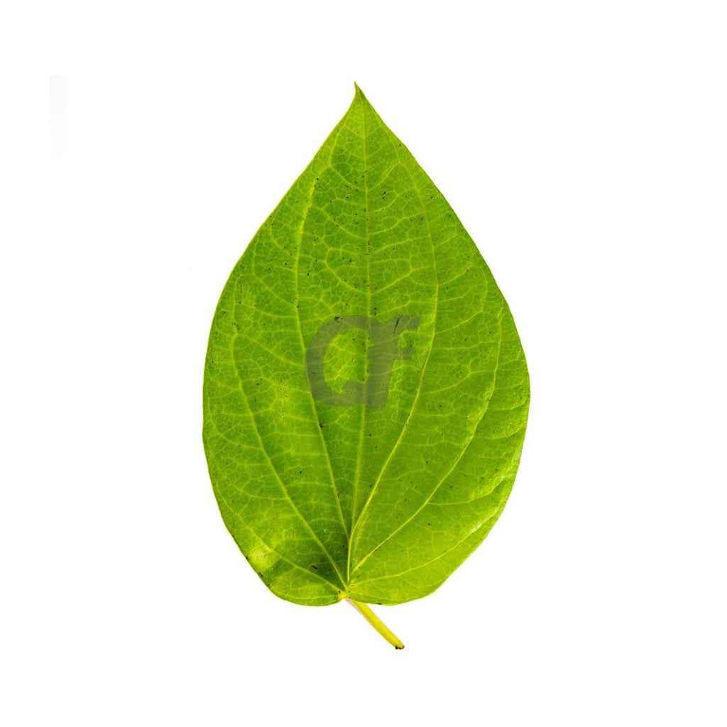 Pan Leaves - Pack Of 10