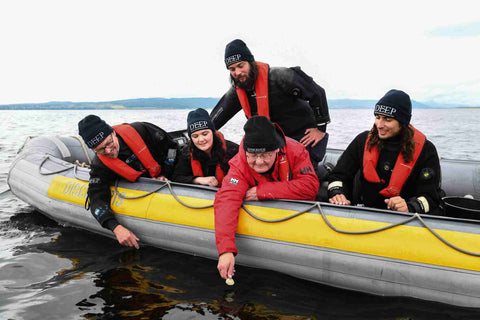 HWU scientist team and Hamish Torrie, CSR Communications Director at Glenmorangie celebrate the deployment of the 20,000th oyster into the Dornoch Firth