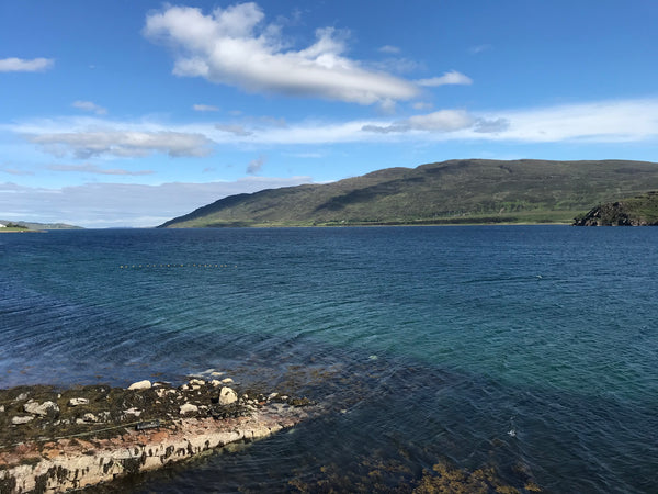 A sunny day Little Loch Broom