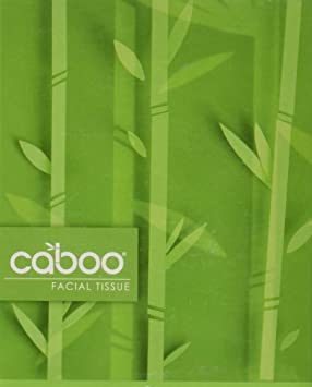 Caboo Bamboo 2-Ply Facial Tissue 2x90count