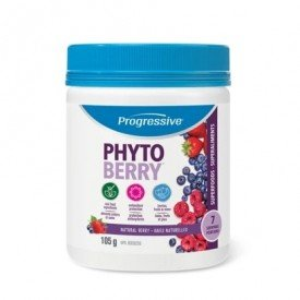 Progressive Phyto Berry Powder 105g