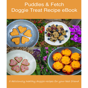 Doggie Treat Recipe eBook