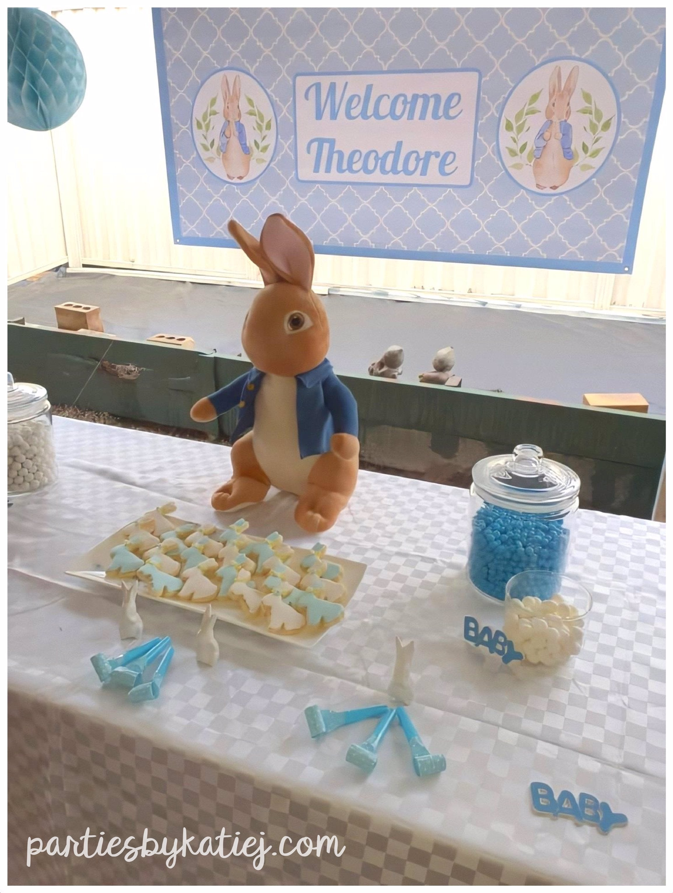 Peter Rabbit Birthday Party Decorations
