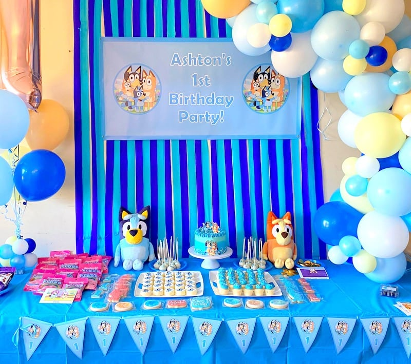 Bluey Birthday Party Photos