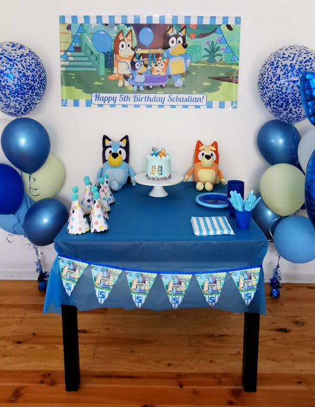 Boys Bluey Birthday Party