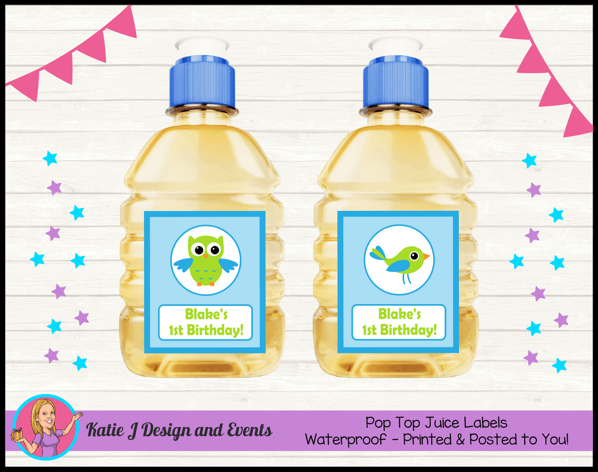 Boys Birds Owl Personalised Birthday Party Pop Top Juice Labels