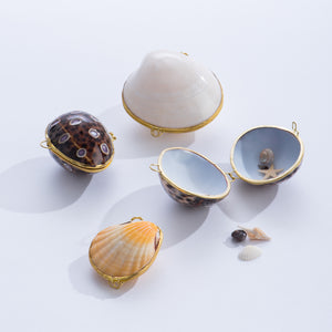Seashell Boxes