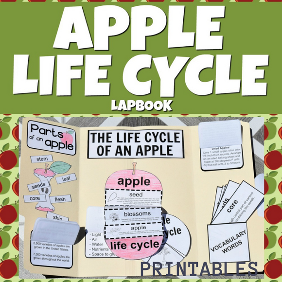 Apple Life Cycle Lap Book Printables