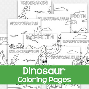 Dinosaurs/Prehistoric Animals Coloring Book