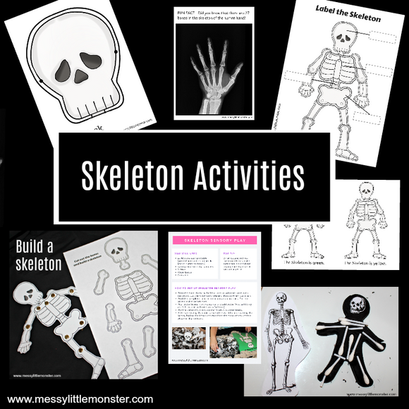Skeleton Activities