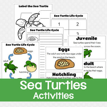 Sea Turtles Worksheets