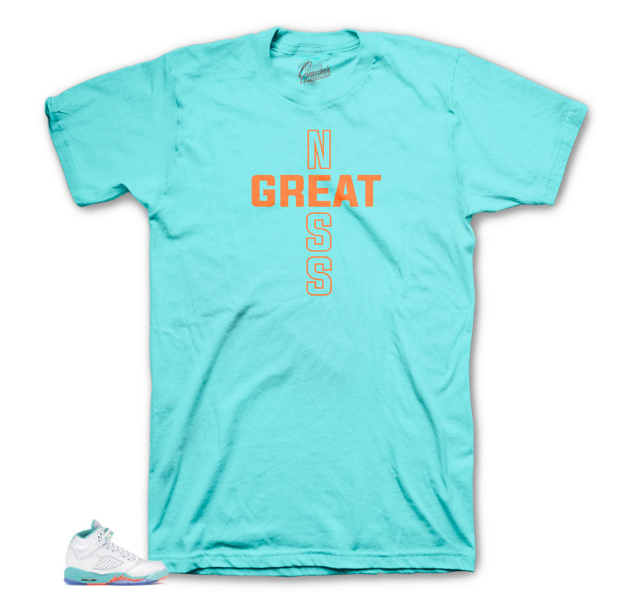 Greatness Light Aqua 5's Shirt