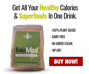 GaiaMeal Is A Plant-Based, Superfoods Game Changing Meal Replacement Helping People To Eat Healthy