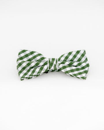 TEDDY Gingham Bow Tie - Olive