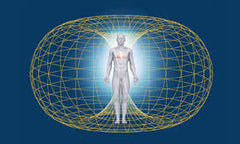 electromagnetic field around a human