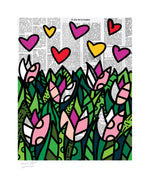 TULIPS - Limited Edition Print