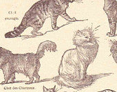 Antique French Print Dictionary Page 1920s Illustrations Cats paper projects scrapbooking, collageBook page