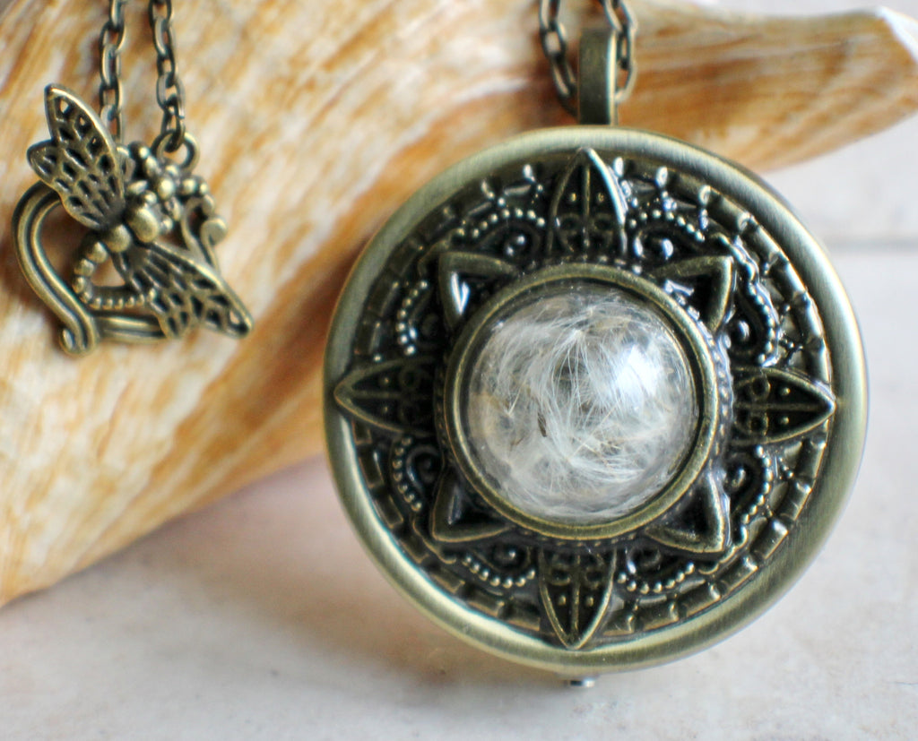 Glass dandelion music box locket chars favorite things glass dandelion music box locket chars favorite things 1 aloadofball Image collections