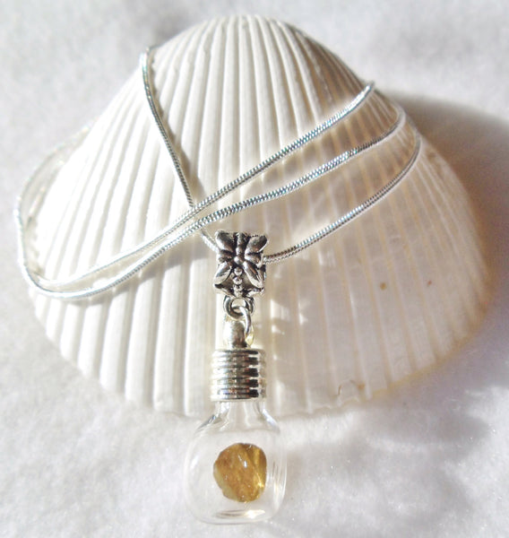 Vial necklace, gold round is encased in vial necklace on sterling silver plated chain - Char's Favorite Things - 4