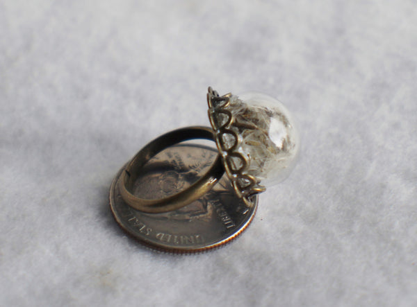 Dandelion seed  ring, glass globe ring filled with dandelion seeds in silver or bronze. - Char's Favorite Things - 5