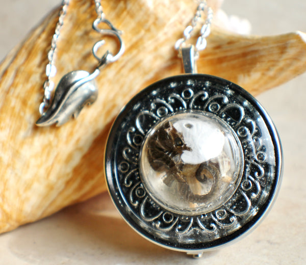 Music box locket,  round locket with music box inside, in silvertone with tiny sea life treasures encased in glass - Char's Favorite Things - 1