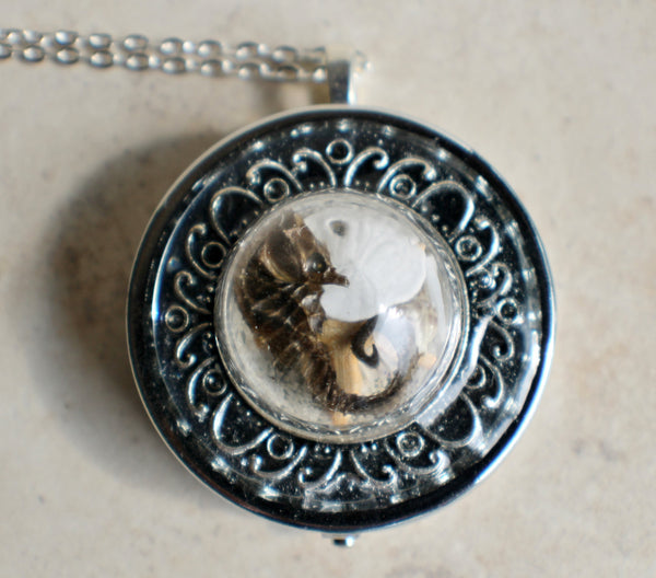 Music box locket,  round locket with music box inside, in silvertone with tiny sea life treasures encased in glass - Char's Favorite Things - 3